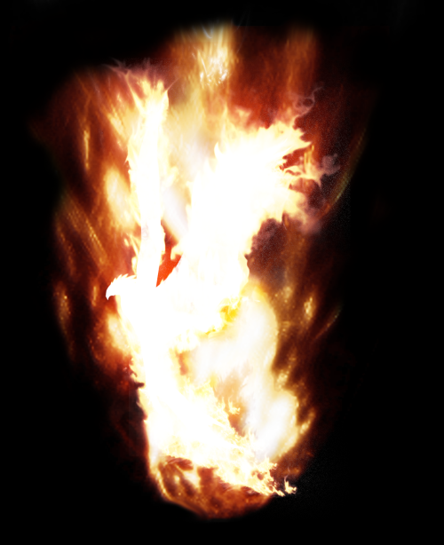 A Phoenix burns on its pyre